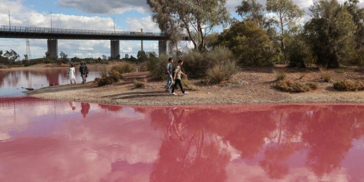 Pink Lake story